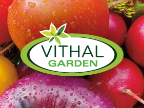 diseño web vithal garden